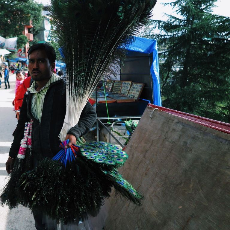 Feather seller